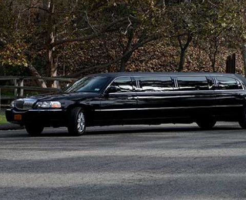 Lloyd's Limo service photo