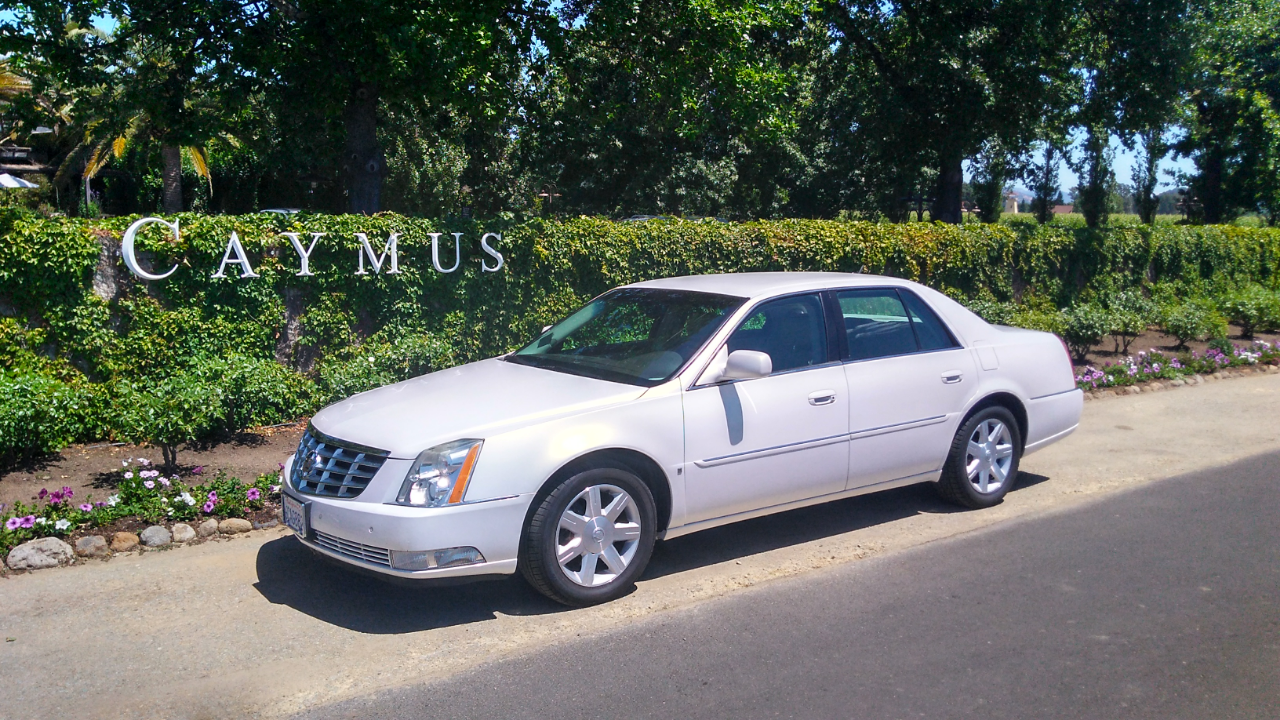Dugway Limousine Service service photo