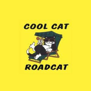 Roadcat Shuttles logo