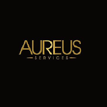 Aureus Services logo