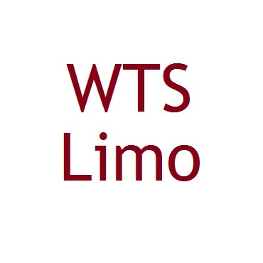 WTS Limo logo