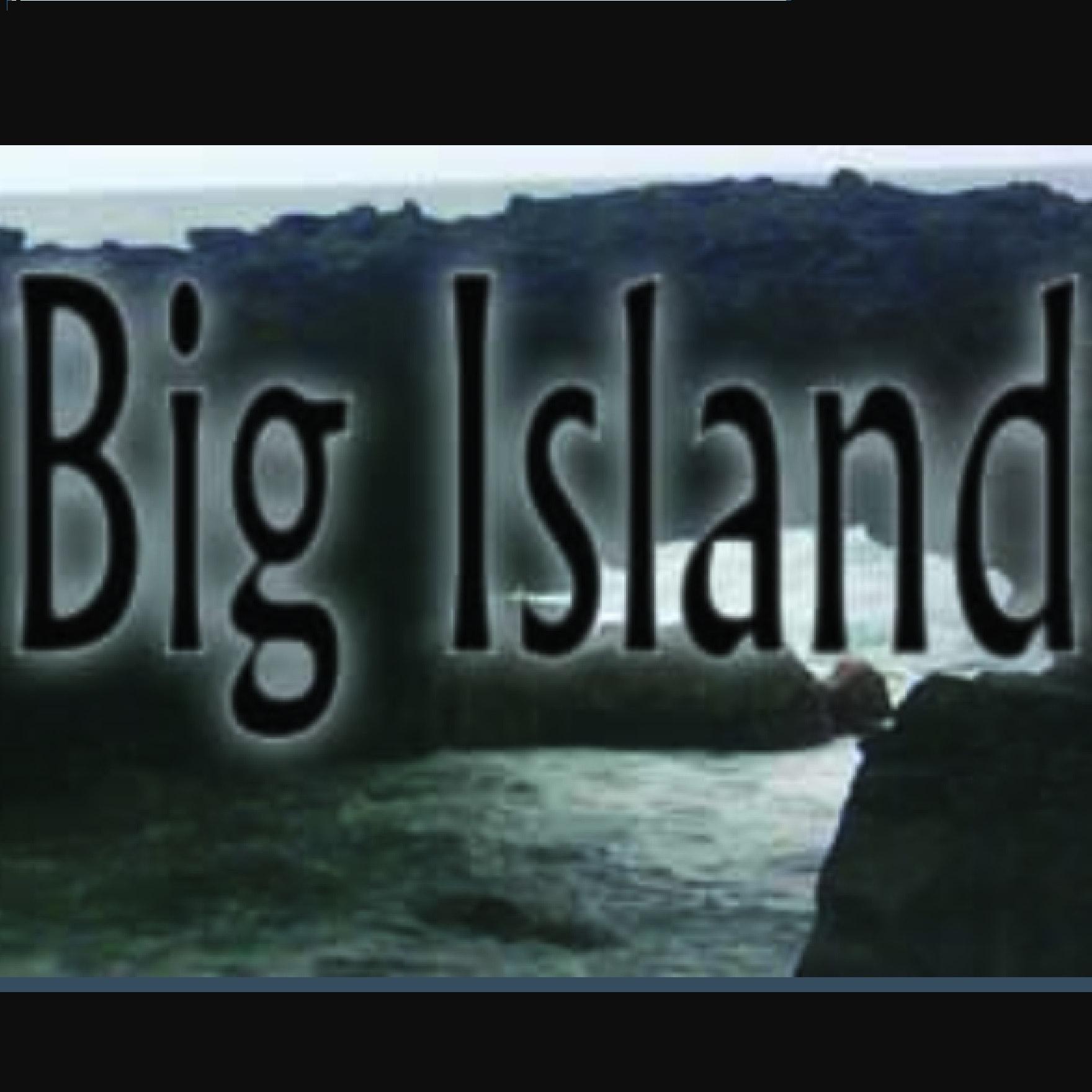 Big Island Auto Rentals logo