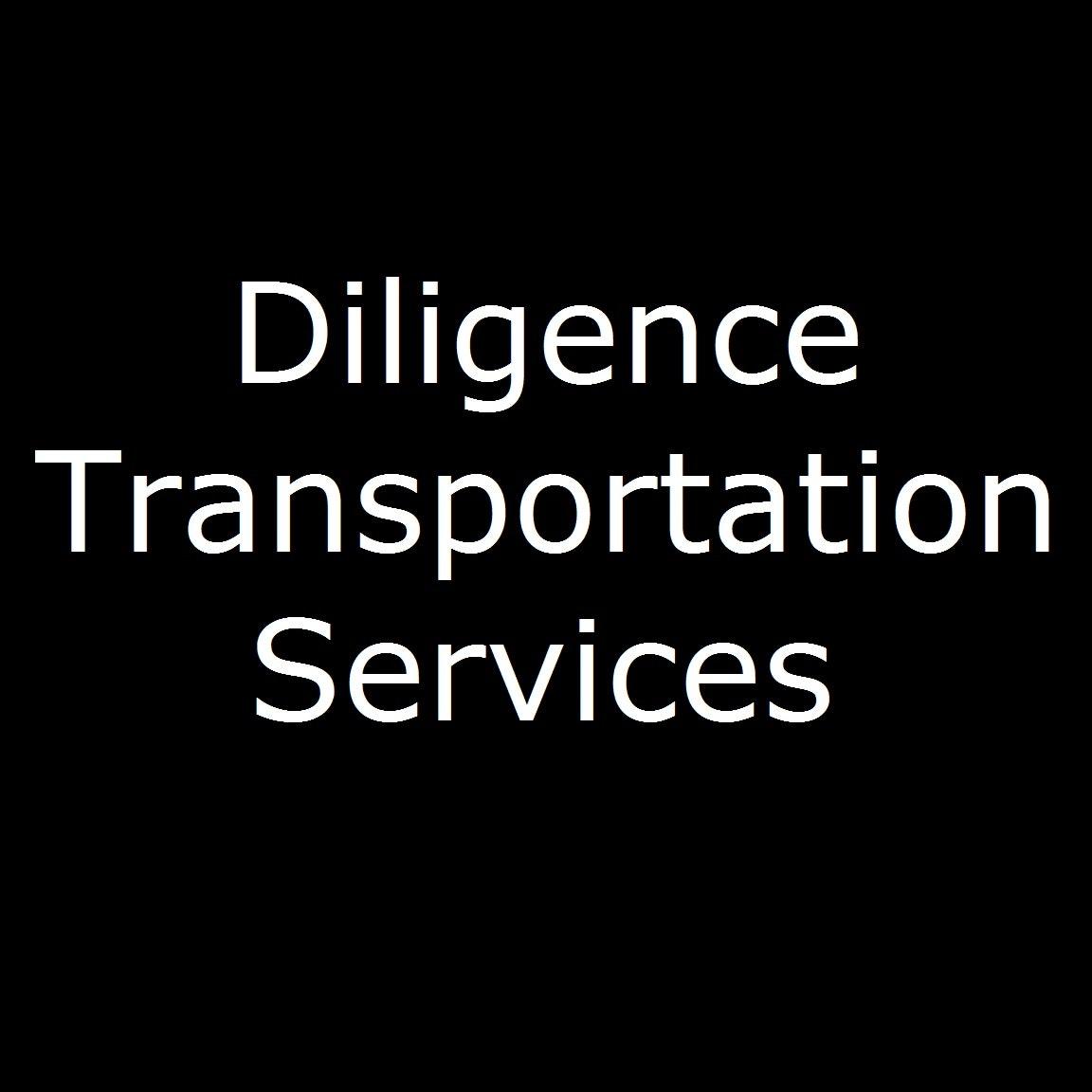 Diligence Transportation Services logo