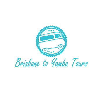Brisbane to Yamba Tours