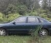 Big Island Auto Rentals