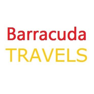 Barracuda Travels, LLC  logo
